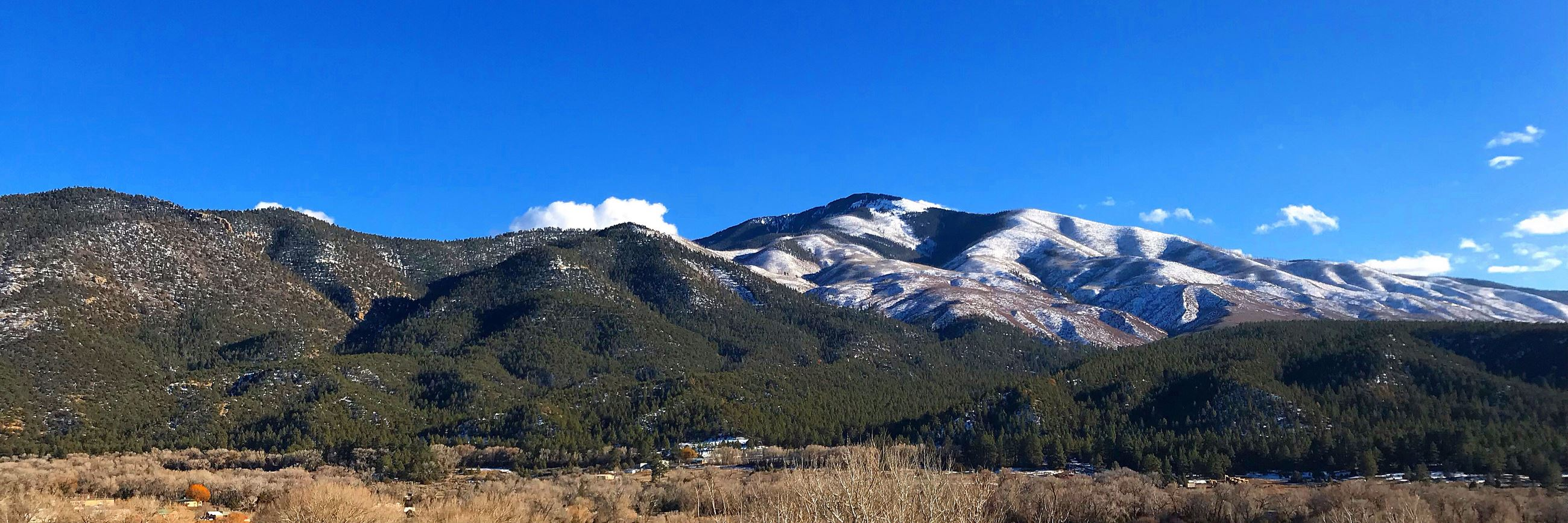 Picture of Questa NM